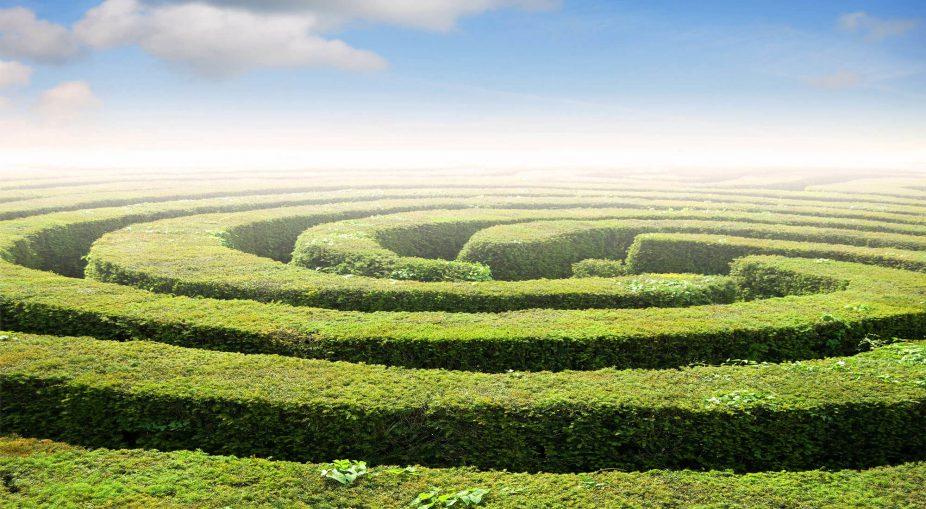 Nel labirinto con il coach